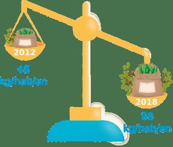 Infographie déchets verts